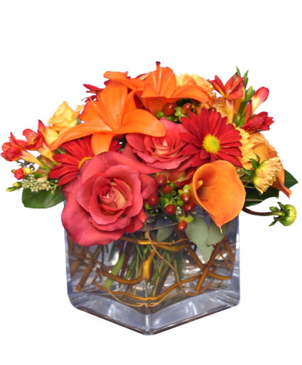 SEASONAL POTPOURRI  Fresh Floral Design