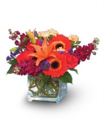 INDIAN SUMMER  Vase of Flowers