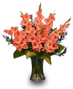 Glorious gladiolus flower vase in richmond vt crimson poppy glorious gladiolus flower vase mightylinksfo