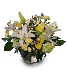 A GENTLE LULLABY of Fresh Flowers in Hernando, MS | DOROTHY K'S FLOWERS & MORE