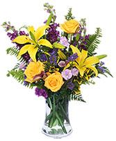 STELLAR YELLOW Flower Arrangement