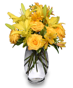 GOLDEN SUNBURST of Fresh Flowers in Youngstown, OH | BLOOMING CRAZY FLOWERS AND GIFTS