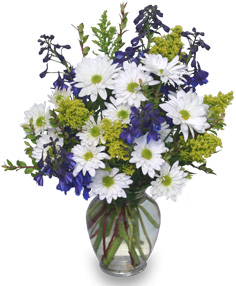 Lazy Daisy & Delphinium Just Because Flowers in Mobile, AL | ZIMLICH THE FLORIST