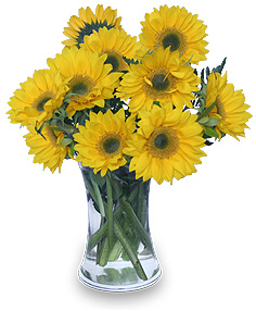 Hello Sunshine! Vase of Flowers in Angier, NC | ANGIER FLORIST