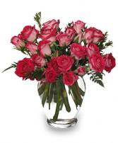 Ring Around the Roses Vase of Spray Roses