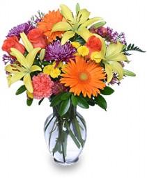 SEPTEMBER SUN Bouquet of Flowers