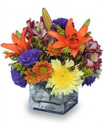 SIMPLE PLEASURES Floral Arrangement