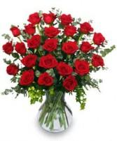 24 RADIANT ROSES Flower Arrangement