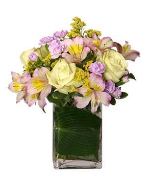 JOYOUS AWAKENING Flower Vase in Port Dover, ON | Upsy Daisy Floral Studio