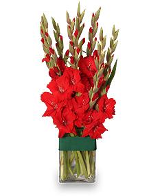 HOLIDAY FLAME Flower Arrangement