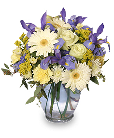 Welcome Baby Boy Flower Arrangement in West Union, OH | West Union Flower Shop