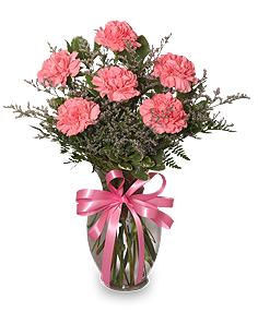 SUGAR 'N SPICE New Baby Bouquet