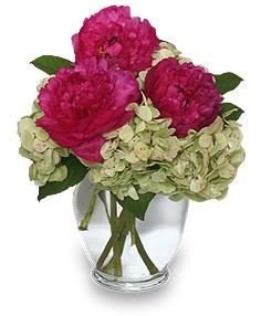 GLORIOUS MAGENTA Vase of Flowers