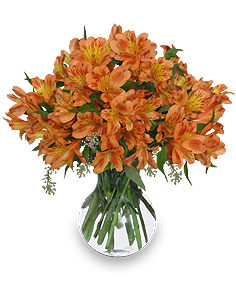 PERSIMMON GROVE Fall Flowers in Solana Beach, CA | DEL MAR FLOWER CO