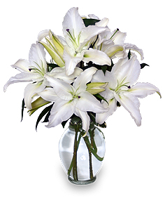 Casa Blanca Lilies Arrangement in Ozone Park, NY | Heavenly Florist