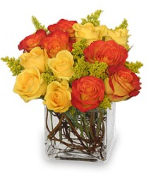 Phoenix Flame Rose Arrangement