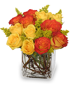 Phoenix Flame Rose Arrangement in Spruce Grove, AB | TARAH'S GROWER DIRECT