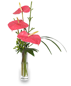 Beyond A Bud Vase Arrangement