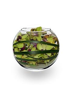 ORCHID BUBBLE BOWL Arrangement