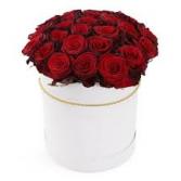 V-13 2-DOZEN ROSES ARRANGED IN A WHITE HAT BOX