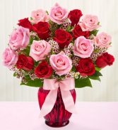 V-43 18 ROSES: RED AND PINK ARRANGED