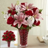 v11 valentines