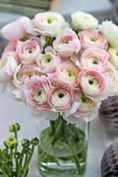 Love you Pink ranunculus vase