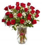 VALENTINE AFFAIR 24 Red Roses