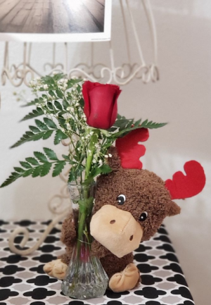 Valentine Moose  in Blackfoot, ID | Urban Blum