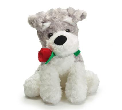 valentine puppy with red rose