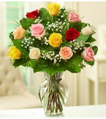 Valentine Rose Elegance