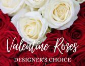Valentine Roses  Designer's Choice Two Dozen