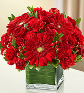 Valentine Sweetheart  Bouquet Roses Gerbera  Carnation in Cube
