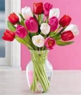 """TWO-LIPS"" FOR MY VALENTINE Tulip Arrangement"