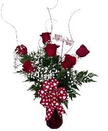 Half Dozen Red Roses 6 Red Roses