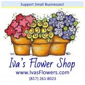 Don't Be Alarmed!  You're at the right place :) Iva's is now Erinn's Creations Florist