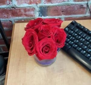 Valentines special Red Roses  in Edmonton, AB | PETALS ON THE TRAIL