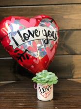 Valentines Succulent Succulent