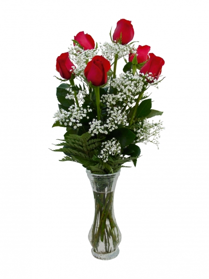 Vase of 1/2 Doz Red Roses