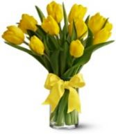 Vase of Yellow Tulips Fresh Flowers