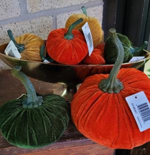 Velvet Pumpkins Gift Item in Brenham, TX   Sunny Day Blossoms Design Studio