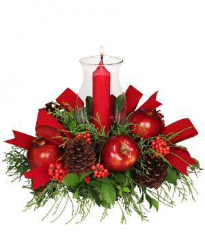 VELVETY RED CENTERPIECE Holiday Arrangement in Du Bois, PA | BRADY STREET FLORIST
