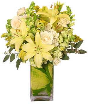 VERY SPECIAL DELIVERY Bouquet in Ozone Park, NY | Heavenly Florist