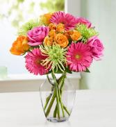 Vibrant Bloom