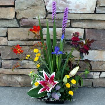 Vibrant Landscape Design Summer Garden Flowers