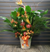 Vibrant Life (Customization Available)  Peace Lily with Fresh Cut Flowers