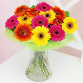 VIBRANT POOL OF GERBER DAISIES VASE