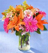 Vibrant Spring Arrangement Fresh Flowers