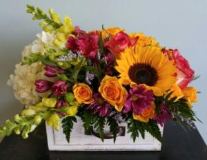 Blissful Blossoms   in Winter Springs, FL | WINTER SPRINGS FLORIST AND GIFTS