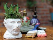 """Vincent Van Gogh planter for 2"""" plants"""